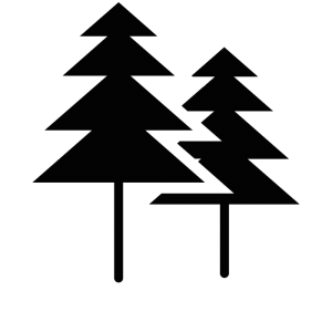 B-Trees Data Structure